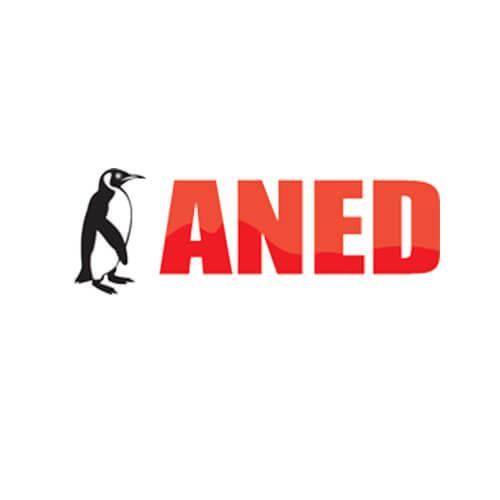 aned.biz.pl